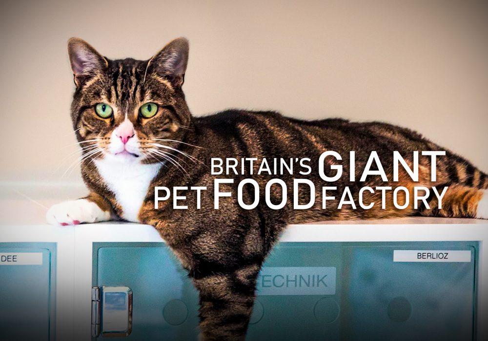 Pet food website image